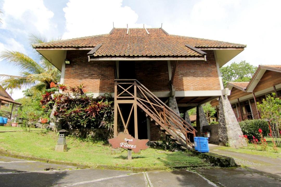 Rekomendasi Penginapan untuk Staycation di Disaster Oasis Training Center Hotel